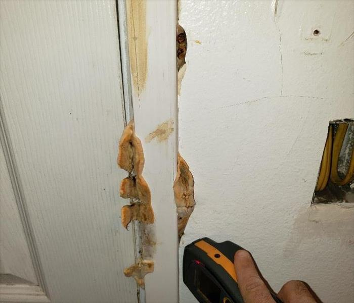 Brown mold mushrooms seeping through the door casing.